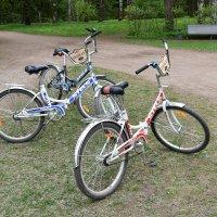 Спешите, осталось только три велосипеда... :: Валерий Подорожный