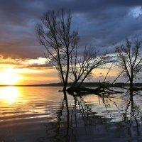 Вода, как  атласное платье под вечер надела природа :: галина северинова