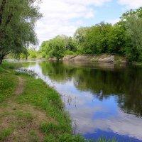 В реку смотрятся облака... :: Валентина ツ ღ✿ღ