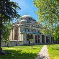 В саду при мечети Шехзаде, Стамбул :: Ирина Лепнёва