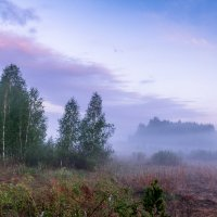 синий туман :: Василий И