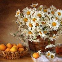 Про ромашки и абрикосы. :: alfina