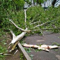 Пятиминутный ураган в Москве :: Ирина Князева
