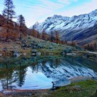 Прикосновение миров - Глядят в зеркальном отраженьи :: Elena Wymann