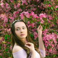 Цветущий май - в яблоневом цветении. :: Сергей Гутерман