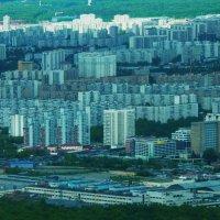 Следующая перспектива Москвы после сноса пятиэтажек и застройки всех промзон... :: Galina Leskova
