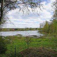 На берегу озера :: Ольга Чистякова