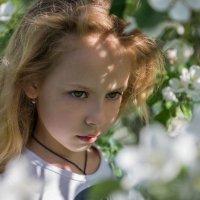 Вновь мая в саду колдовское безумье :: Ирина Данилова