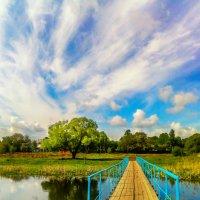Мостик, дерево, облака. :: Александр Кореньков