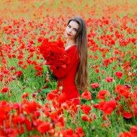 Маковое поле... :: Ольга Маркарова