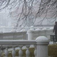 В туманном Монплезире...... :: Юрий Цыплятников
