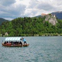 Озеро Блед, Словения :: Tatiana Belyatskaya