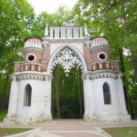 Виноградные ворота :: Андрей Солан
