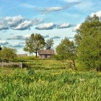 Летом в деревне :: Виктор Журбенков