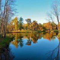 Прощание с Шапельным прудом... :: Sergey Gordoff