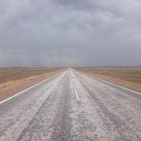 Трасса Астана-Алматы :: Maxim Burkeyev
