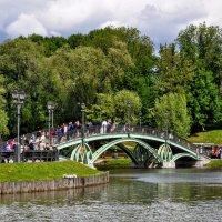 Царицынский мост :: Анатолий Колосов