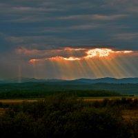 Солнечное озарение :: Владимир Куликов