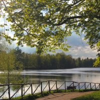 Майский вечер в парке :: Алёнка Шапран
