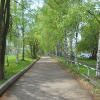 В городе весна :: Александр Попков