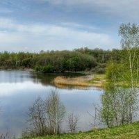Картинка из минувшей весны :: Милешкин Владимир Алексеевич