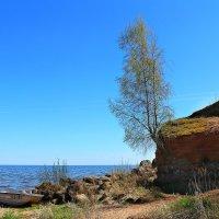 Калласте- страна Причудья. :: Marina Pavlova