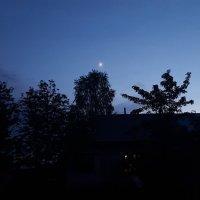 Вечер,деревья,месяц :: Александр Жирный