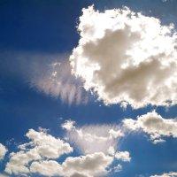 А лето цвета неба.. :: Андрей Заломленков