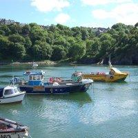 Прилив в гавани :: Natalia Harries