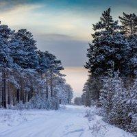 Зимняя дорога :: Radist