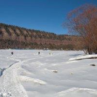 Дорожка к посёлку у гор :: Анатолий Иргл