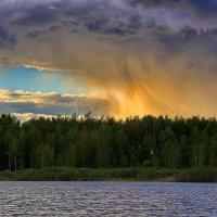 Золотой дождь :: Alexander Asedach