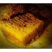 Соты с мёдом :: Григорий Кучушев