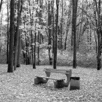 Парковый пейзаж :: Сергей Тарабара
