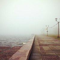 утро туманное :: татьяна якухина