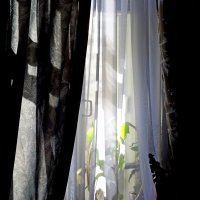 окно :: Natalia Mihailova