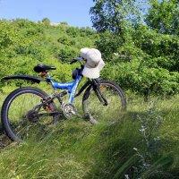 Я буду долго гнать велосипед. В глухих лугах его остановлю. ( Барыкин ) :: Валентина ツ ღ✿ღ