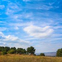 Спокойствие в горах :: Ольга (Кошкотень) Медведева