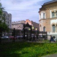 Сад Сан-Галли. (Санкт-Петербург). :: Светлана Калмыкова