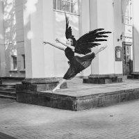 Крылья :: Вячеслав