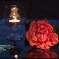 Одинокая роза :: Константин Батищев