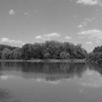 Небольшое   озеро   в   Ивано - Франковске  ,  Украина . :: Андрей  Васильевич Коляскин