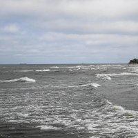 В первый день лета на Балтике :: Маргарита Батырева