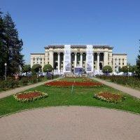 Адматы. :: Murat Bukaev