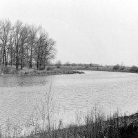 На озере Глушец :: Сергей Тарабара