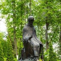 памятник преподобному Савве Сторожевскому :: jenia77 Миронюк Женя