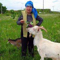 Устали от жизни, сплошные проблемы? - купите козу!:) :: Андрей Заломленков