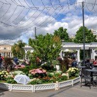 Дачный садик в центре города :: Анатолий Колосов