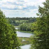 Озеро Вилкокшнис :: Kliwo