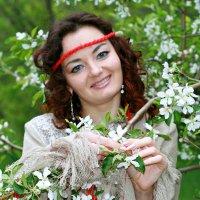 Яблони в цвету мою тревожат душу ... :: Евгений Юрков